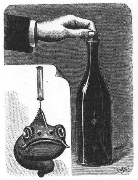un-microbe-dans-la-bouteille