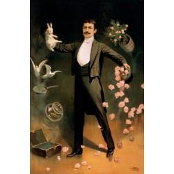 Affiche de spectacle de magie magicien avec un lapin