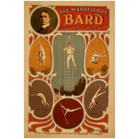 The marvellous Bard phenomenal trick swinging wire artist