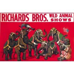 Affiche de cirque avec des éléphants