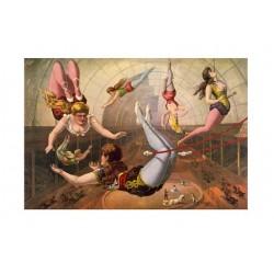 Affiches d'acrobates de music-hall et de variétés. Taille de l'affiche : 37 x 26 cm en jpeg