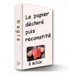 E-book Le papier déchiré et reconstitué