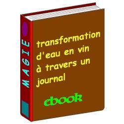 E-book Transformer de l'eau en vin