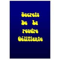 E-book Secret de la poudre gélifiante